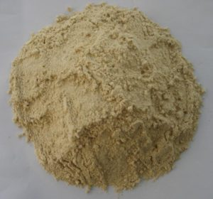 Gluten pszenny