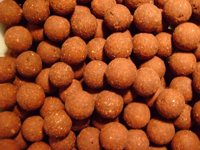 kulki proteinowe na karpia