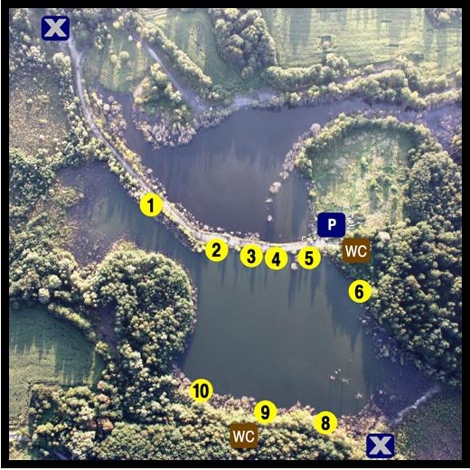 łowisko adosov w czechach