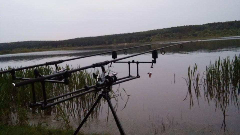 łowienie karpi wiosną