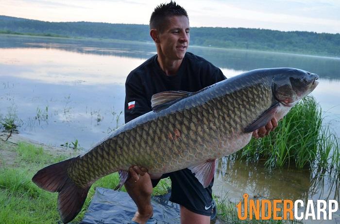 amur 23,200 kg
